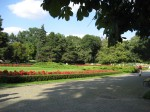Flower beds in Park Ujazdowski. When it was warmer, I'd run-walk in this park every morning.